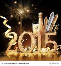 GUTEN RUTSCH INS NEUE JAHR 2015