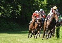 Pferderennen: Bei einem britischen Radioreporter sprudelten 176 Wörter in einer halben Minute aus dem Mund